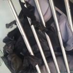 ハジャイ行きタイ国鉄・3等列車の感想