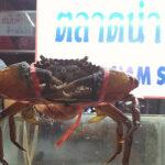 バンコクの激旨ローカルごはんが満載のブログ『激旨!タイ食堂』さんとシーフード食べに行きました
