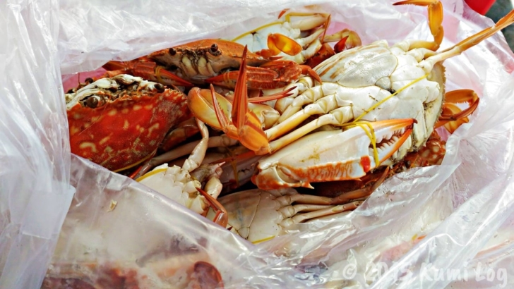ケップのカニ市場、茹でられた蟹