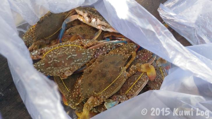 ケップ、1kg分の蟹