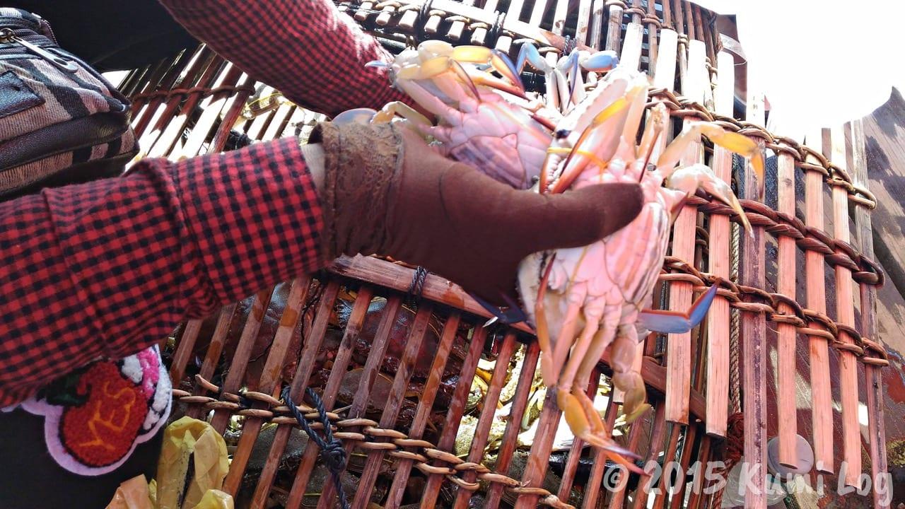 自然豊かなカンボジアの田舎町ケップで、カニ市場とカニ肉を楽しむ