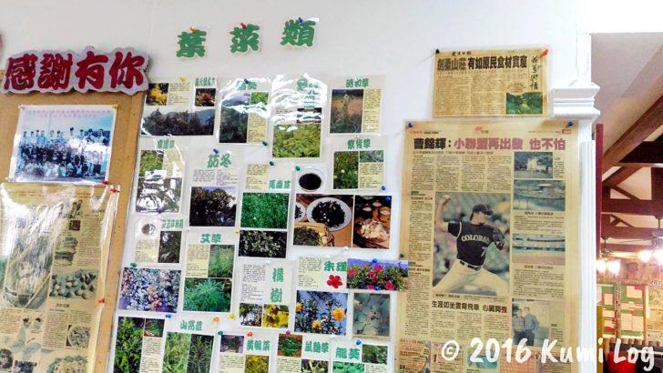 剣柔山荘の野草の説明(葉菜類)