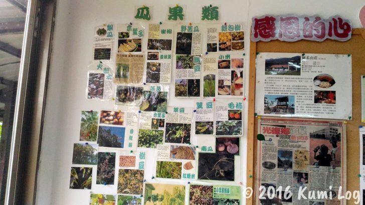 剣柔山荘の野菜説明(瓜果類)