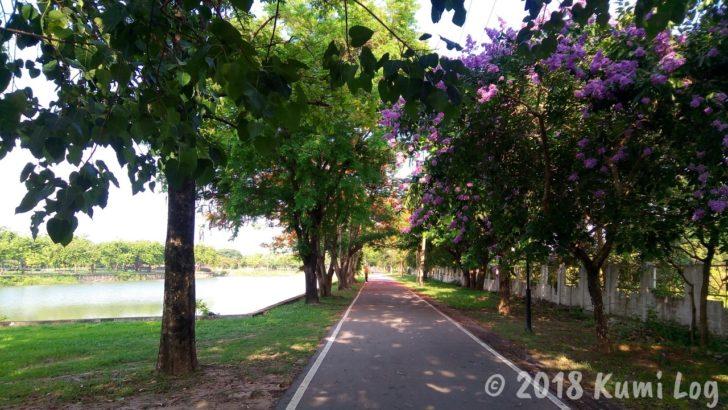 ノーンカーイ、Nong Thin Public Park