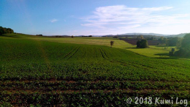 ドイツの田舎の畑