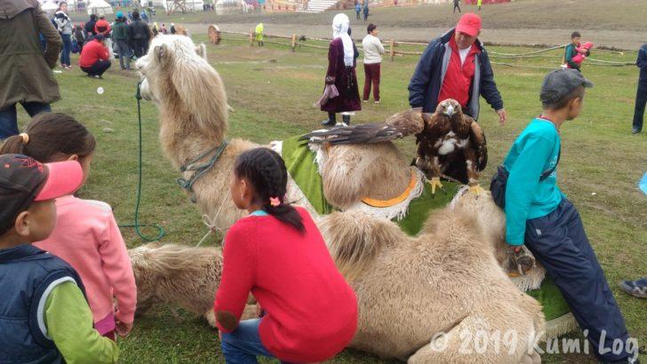 キルギス・ドヤ顔の鷲とラクダ