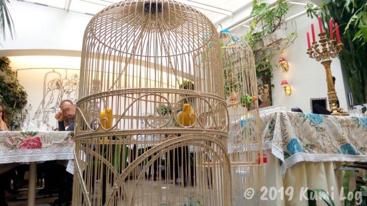 Baczewski Restaurant、鳥かご
